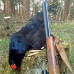 Комбинированное оружие и современный охотник